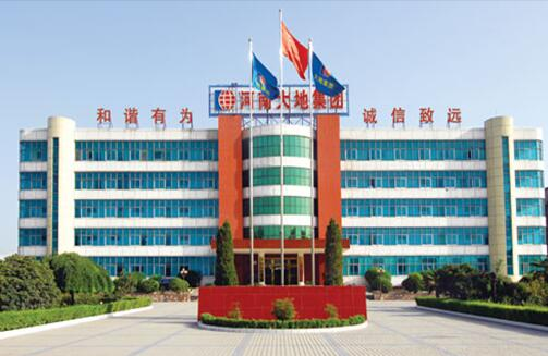China Weigao Transmission-Henan Dadi Cement Co., Ltd. application case